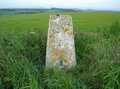 Trig in a field