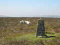 Colva Hill trig pillar looking west