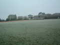 No Cricket Today - Pitch Frozen