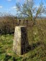 Trig pillar at Woolbury Ring
