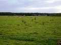 E trig (vacant site)