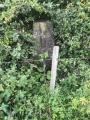 1. TP5635 Rempstone Hill